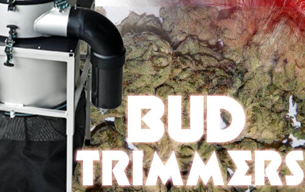 bud trimmers
