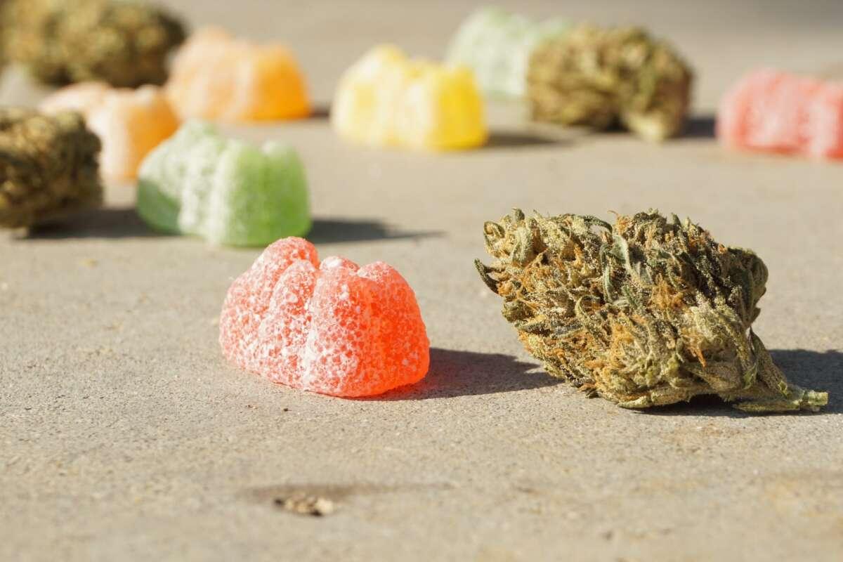 How To Make Cannabis Gummies